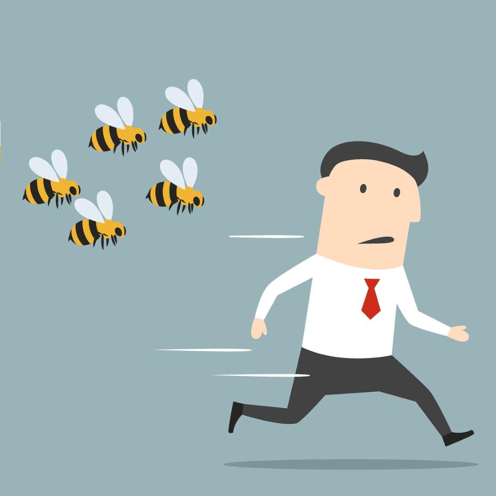 Bees chasing man - sting